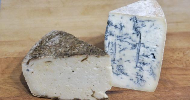 paolo-amato-caprino-blue-bufala